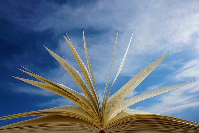 Book Pages Read Education Novel  - Kranich17 / Pixabay
